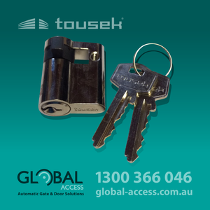 1045 0027 Tousek Half Cylinder With Keys 1